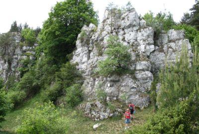 Dreveník - travertínová skala Raj